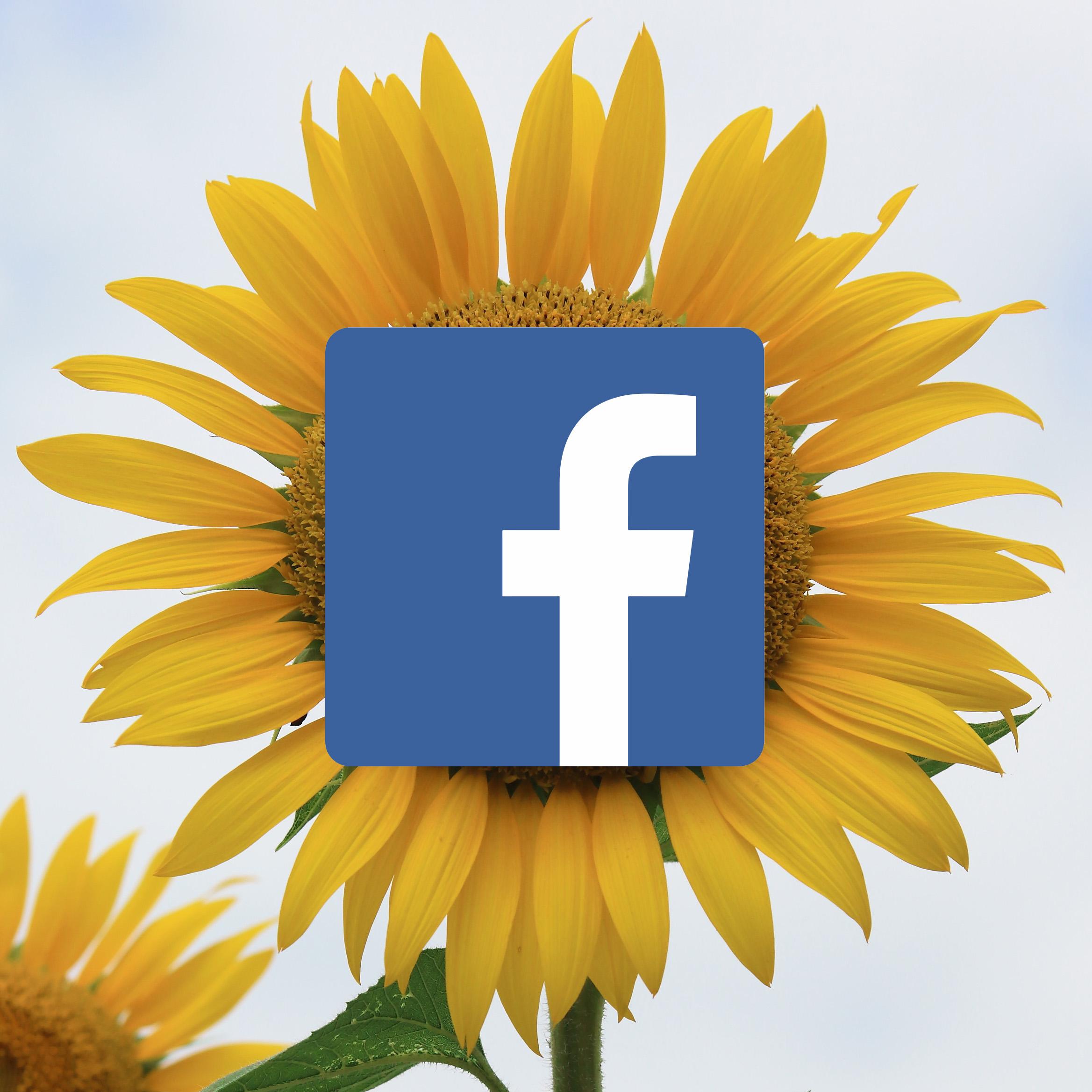 Kukkatoimitus-facebook-artikkeli